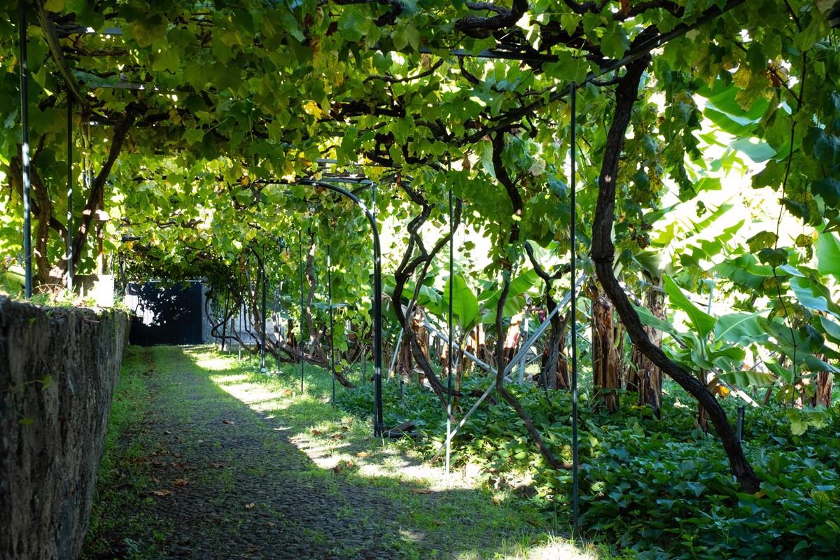 22 Our Madeira Casa Do Feitor Gardens
