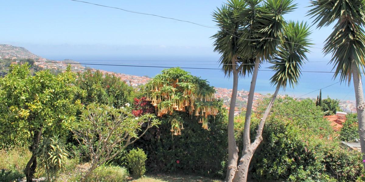 19 Our Madeira Casa Belflores View