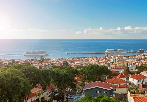 Our Madeira Villas in Madeira with Seaview - Skylounge