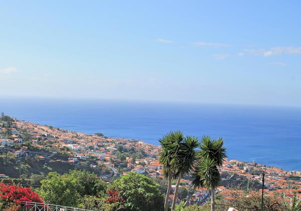 OurMadeira Villas in Madeira Quinta Dalegria View From the Garden