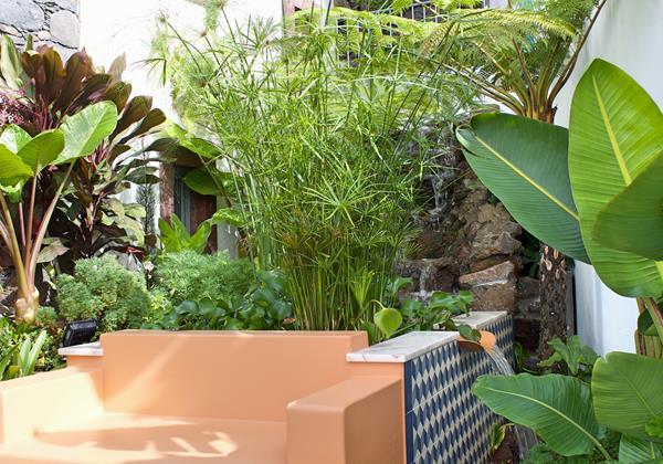 Ourmadeira Villa Do Mar IV Garden