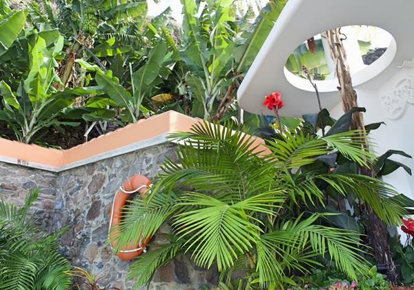 Ourmadeira Villa Do Mar IV Palm And Banana Trees