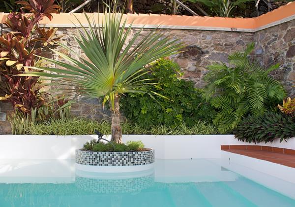 Ourtmadeira Villa Do Mar IV Palm Tree Island