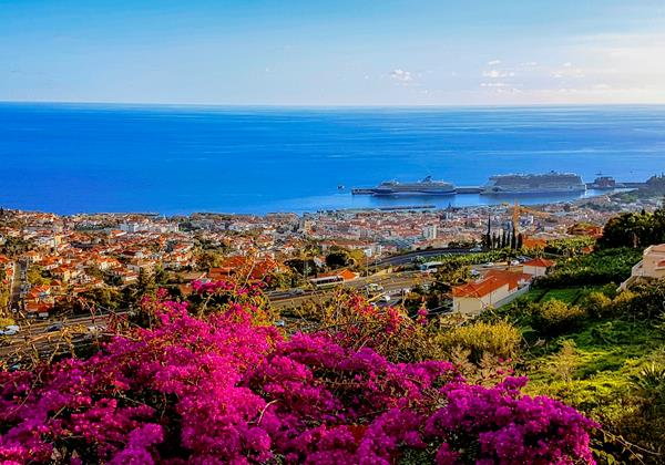Ourmadeira Villas In Madeira Grandview View Of Funchal And Sea