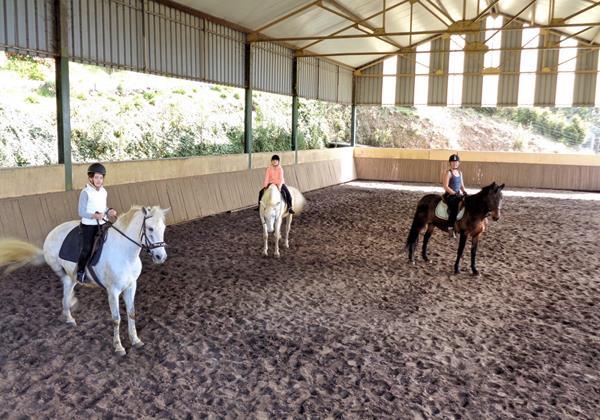 18 MHRD Escapada Dos Cavaleiros Horseriding Lessons