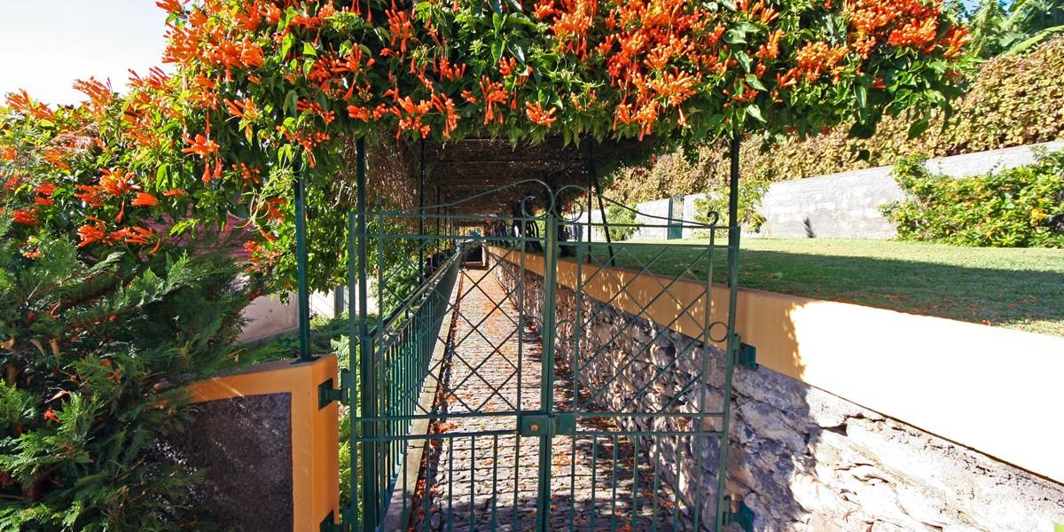 17 Quinta Girassol