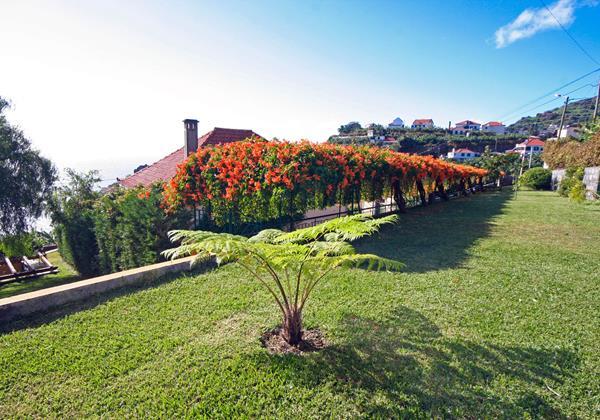 Our Madeira Villas in Madeira Quinta Girassol Lawn