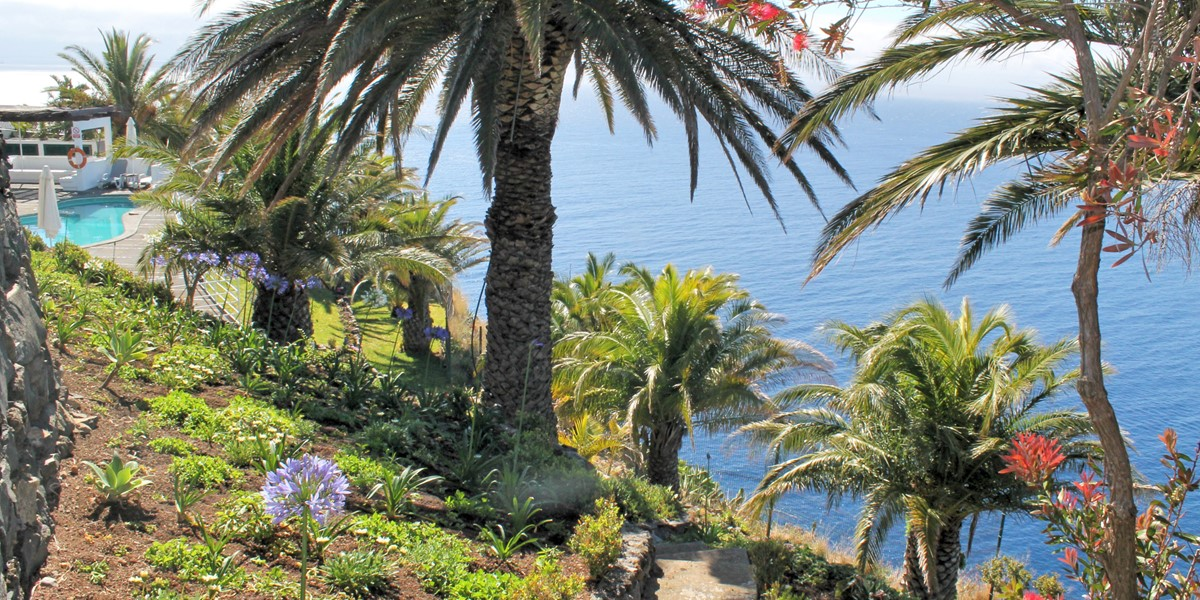 24 Our Madeira Villa Da Falesia Gardens And View 4