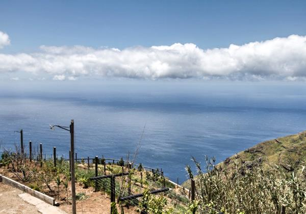 Our Madeira - Tranquil Villas in Madeira - Top Of The Cliff